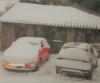 Rocky und der T-Cross im Schnee.png